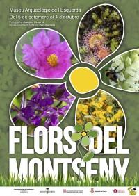 Flors del Montseny. Nova exposició temporal